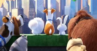 Pets – A Vida Secreta dos Bichos